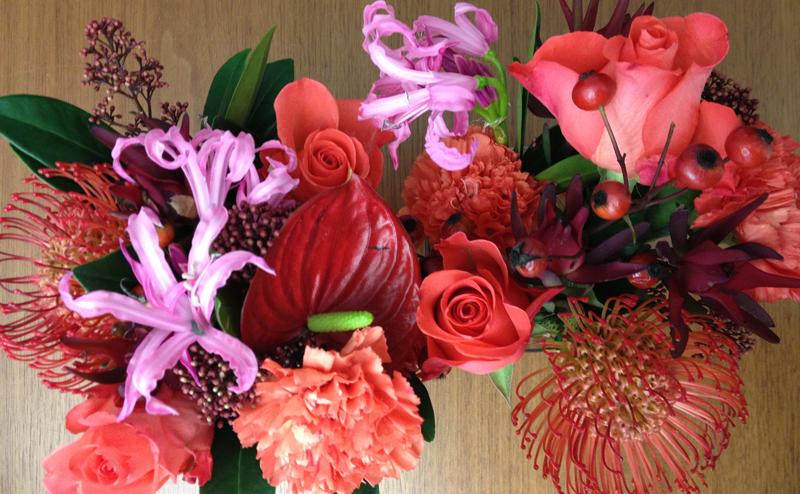 Impressionen Blumen